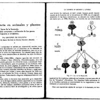 202-to-214-la-heren-plant-anim.pdf